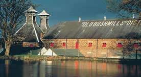 bushmills-distillery2